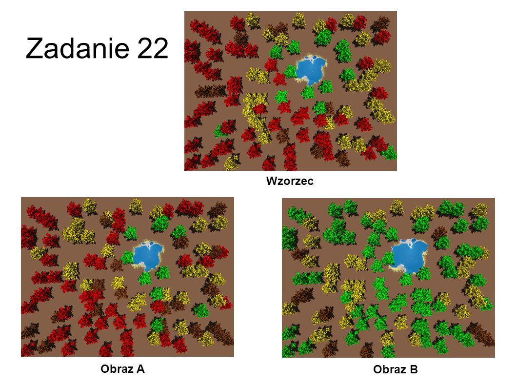 Zadanie 22 Wzorzec Obraz A Obraz B 49