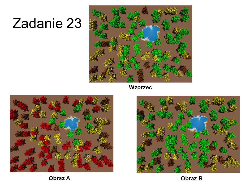 Zadanie 23 Wzorzec Obraz A Obraz B 50