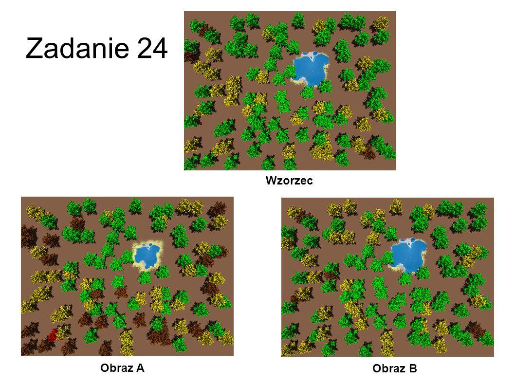 Zadanie 24 Wzorzec Obraz A Obraz B 51