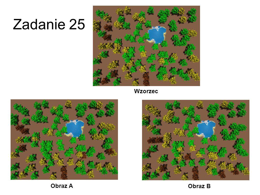 Zadanie 25 Wzorzec Obraz A Obraz B 52