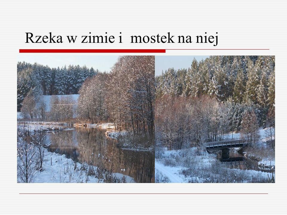 Rzeka w zimie i mostek na niej