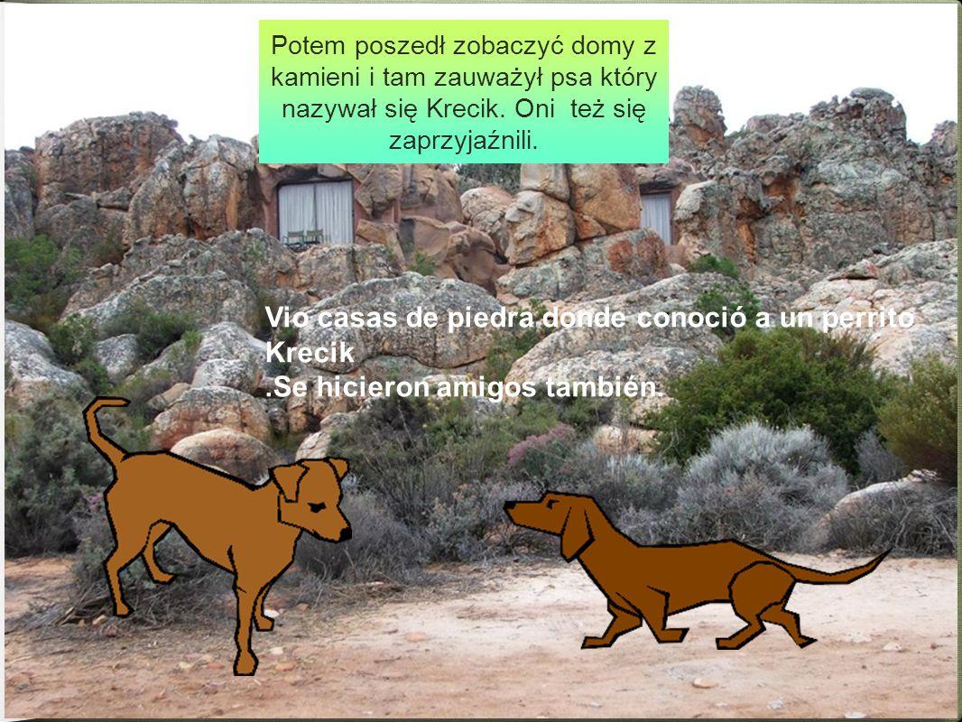 Vio casas de piedra donde conoció a un perrito Krecik