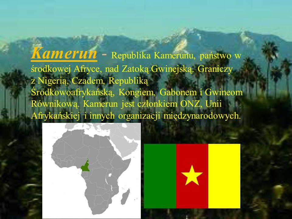 Kamerun - Republika Kamerunu, państwo w środkowej Afryce, nad Zatoką Gwinejską.