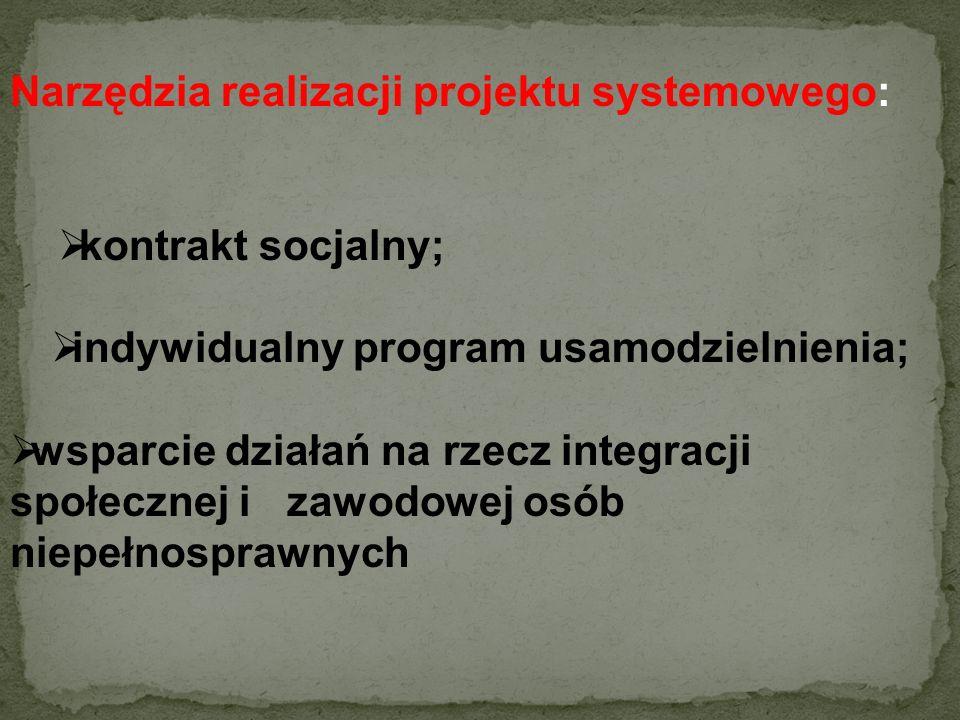 indywidualny program usamodzielnienia;