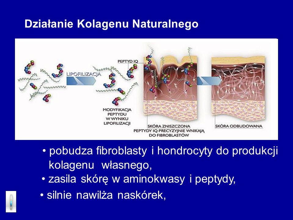 Działanie Kolagenu Naturalnego