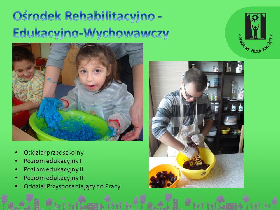 Ośrodek Rehabilitacyjno - Edukacyjno-Wychowawczy