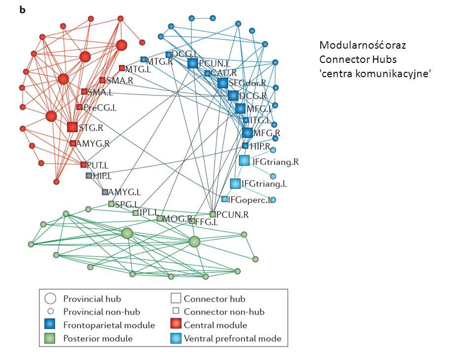 Modularność oraz Connector Hubs centra komunikacyjne