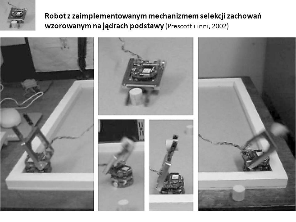Robot z zaimplementowanym mechanizmem selekcji zachowań wzorowanym na jądrach podstawy (Prescott i inni, 2002)