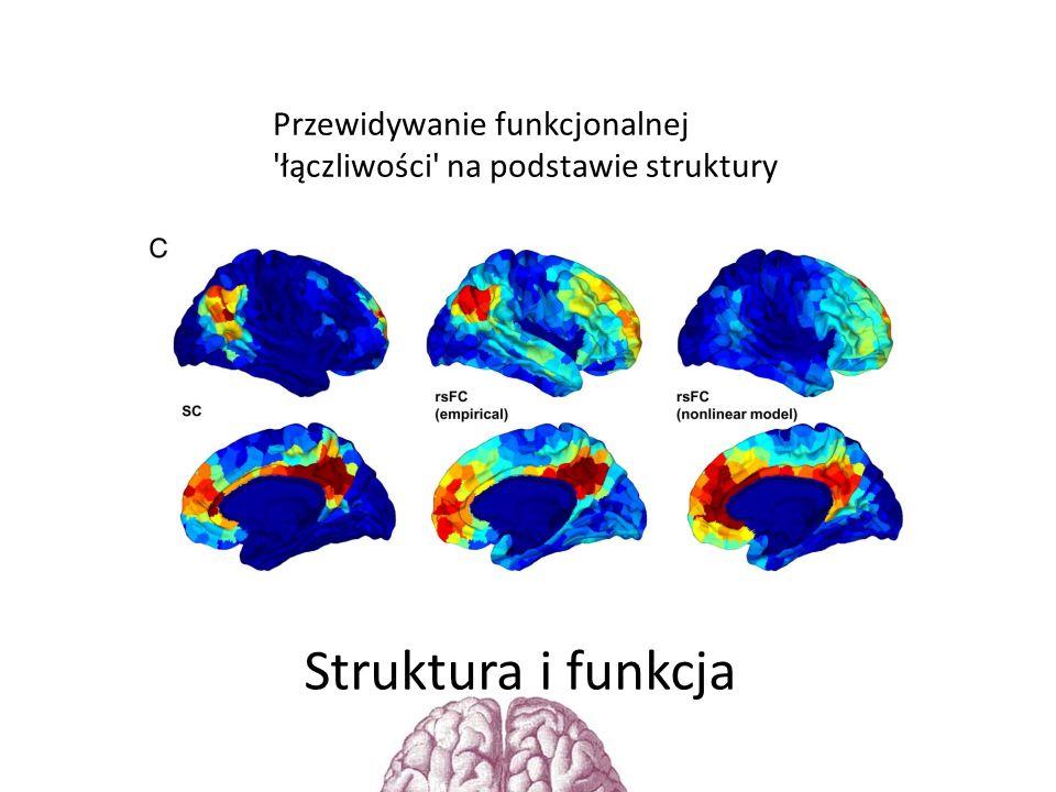Przewidywanie funkcjonalnej łączliwości na podstawie struktury