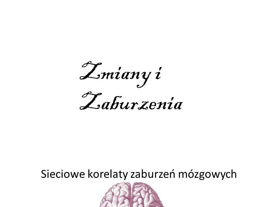 Sieciowe korelaty zaburzeń mózgowych