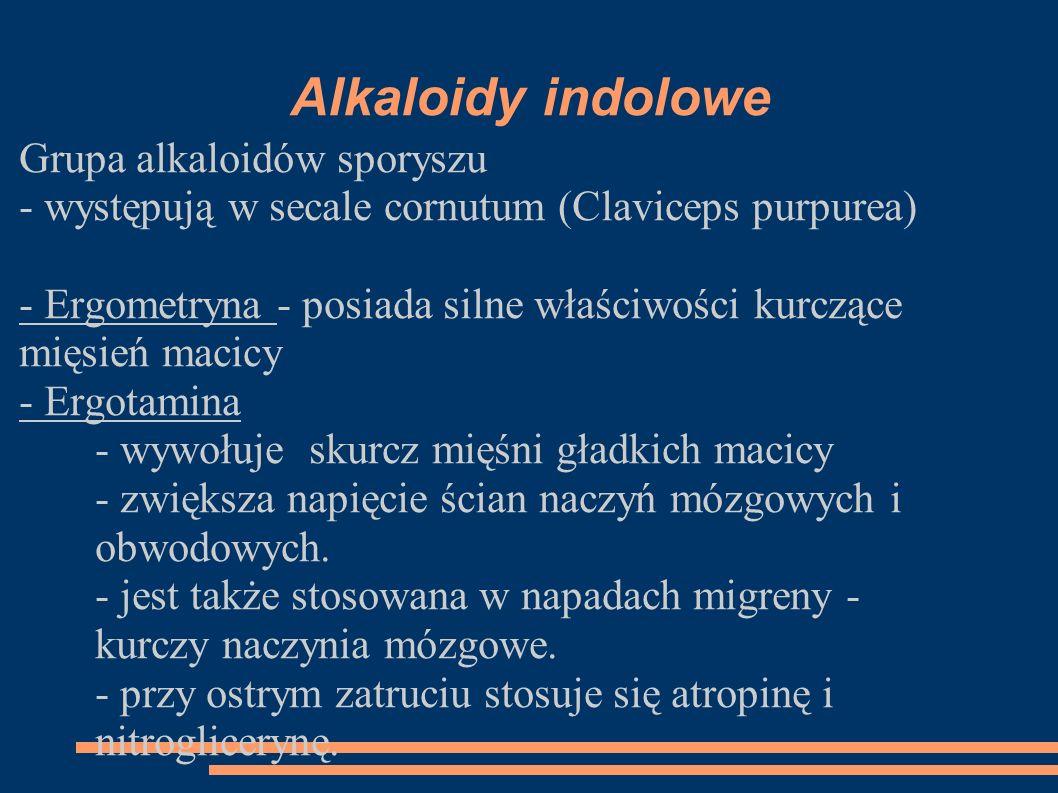 Alkaloidy indolowe Grupa alkaloidów sporyszu