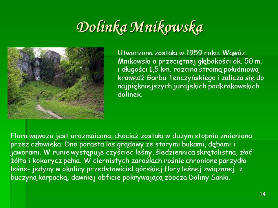 Dolinka Mnikowska