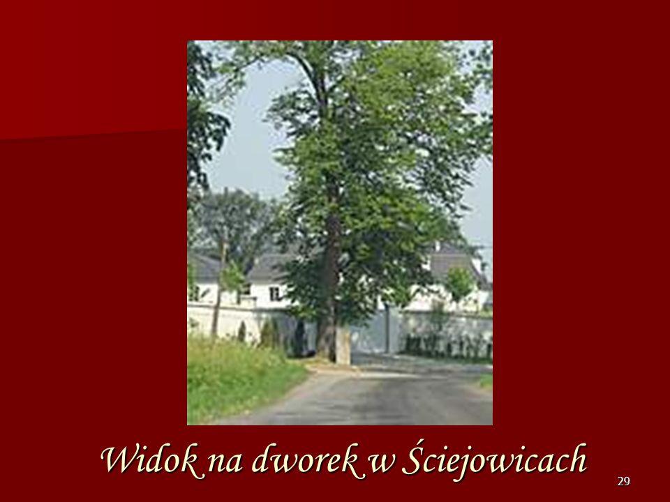 Widok na dworek w Ściejowicach