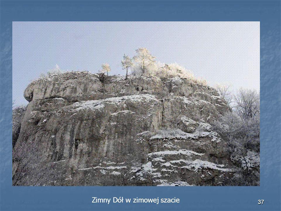 Zimny Dół w zimowej szacie