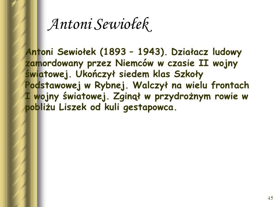 Antoni Sewiołek