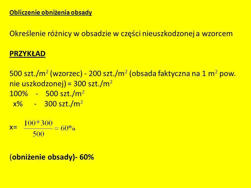 Obliczenie obniżenia obsady Określenie różnicy w obsadzie w części nieuszkodzonej a wzorcem PRZYKŁAD 500 szt./m2 (wzorzec) - 200 szt./m2 (obsada faktyczna na 1 m2 pow.