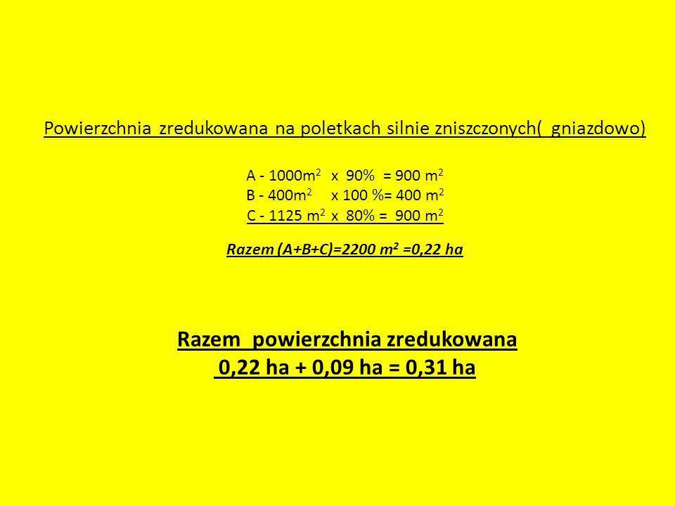 Powierzchnia zredukowana na poletkach silnie zniszczonych( gniazdowo) A - 1000m2 x 90% = 900 m2 B - 400m2 x 100 %= 400 m2 C - 1125 m2 x 80% = 900 m2 Razem (A+B+C)=2200 m2 =0,22 ha Razem powierzchnia zredukowana 0,22 ha + 0,09 ha = 0,31 ha