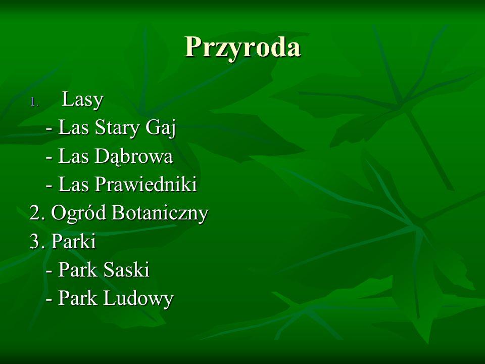Przyroda Lasy - Las Stary Gaj - Las Dąbrowa - Las Prawiedniki