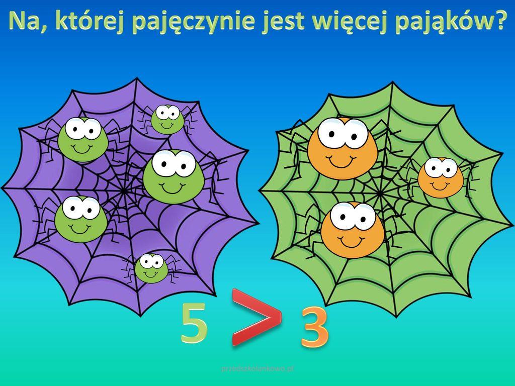 Na, której pajęczynie jest więcej pająków