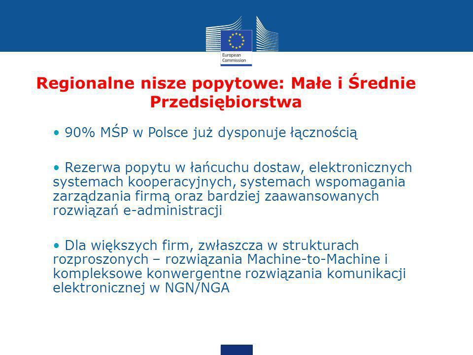 Regionalne nisze popytowe: Małe i Średnie Przedsiębiorstwa