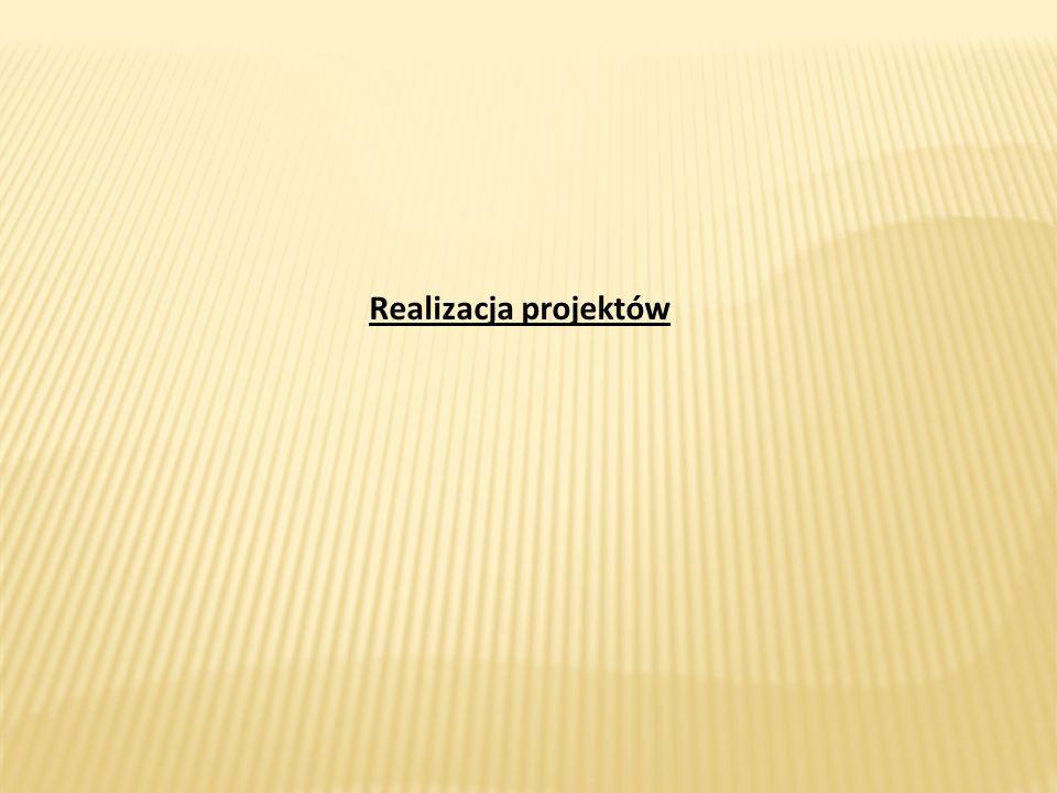 Realizacja projektów Realizacja projektów