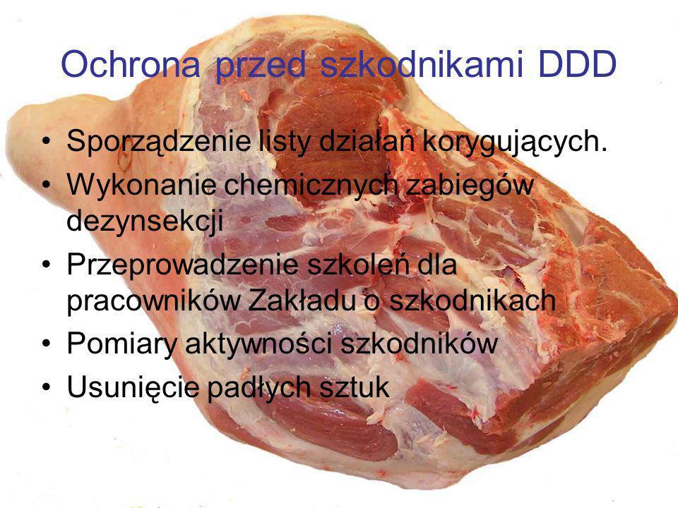 Ochrona przed szkodnikami DDD