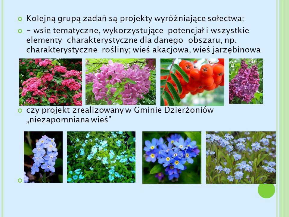 Kolejną grupą zadań są projekty wyróżniające sołectwa;