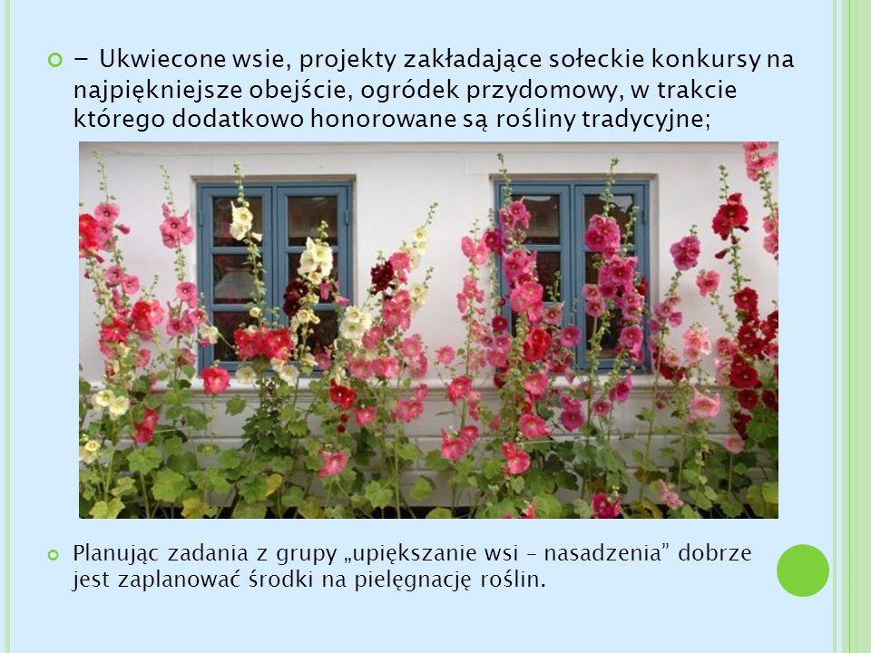 - Ukwiecone wsie, projekty zakładające sołeckie konkursy na najpiękniejsze obejście, ogródek przydomowy, w trakcie którego dodatkowo honorowane są rośliny tradycyjne;