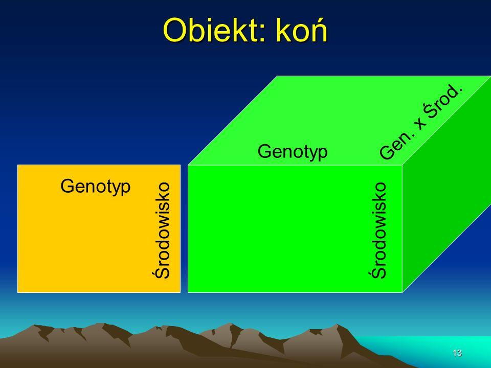 Obiekt: koń Gen. x Środ. Genotyp Genotyp Środowisko Środowisko