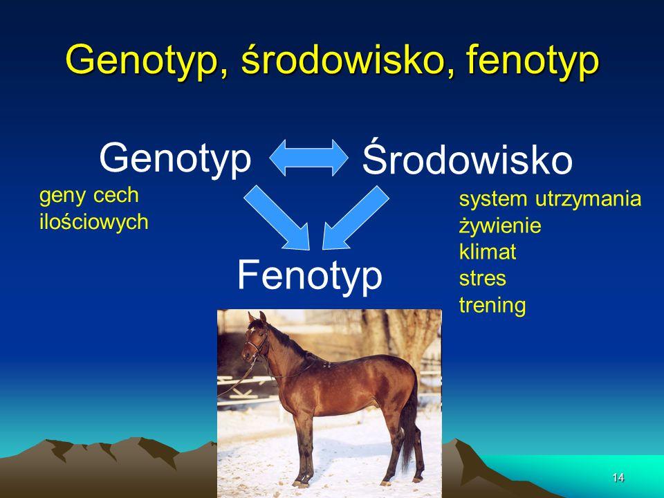 Genotyp, środowisko, fenotyp
