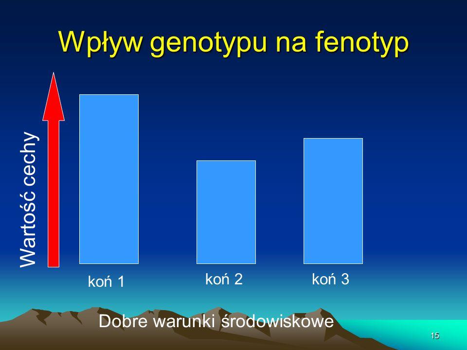 Wpływ genotypu na fenotyp