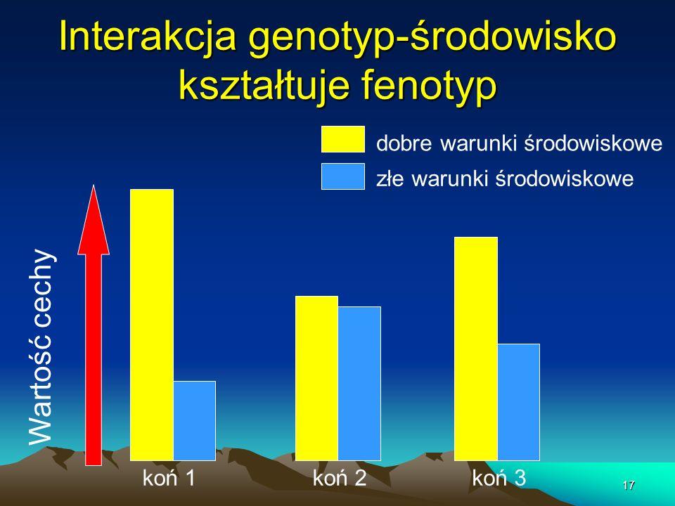 Interakcja genotyp-środowisko kształtuje fenotyp