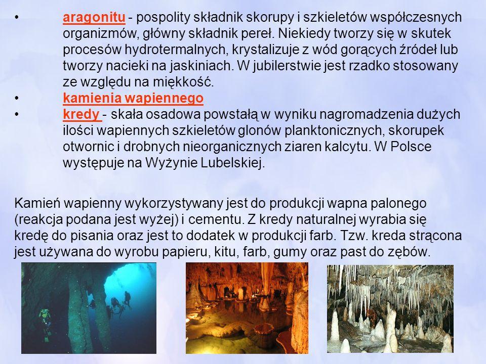 •. aragonitu - pospolity składnik skorupy i szkieletów współczesnych