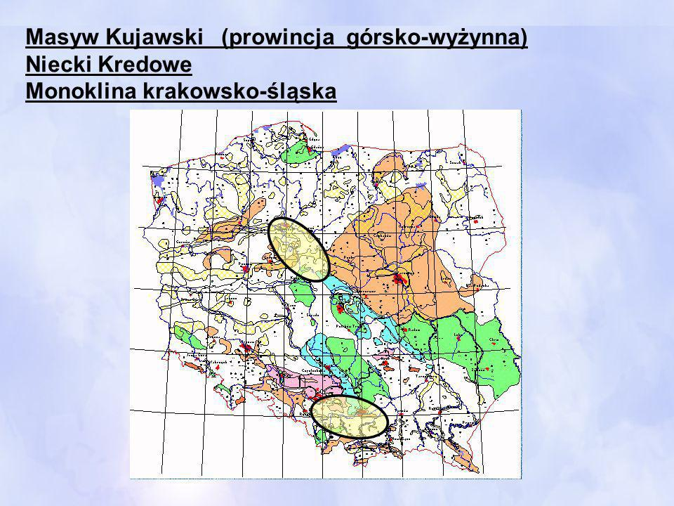 Masyw Kujawski (prowincja górsko-wyżynna)