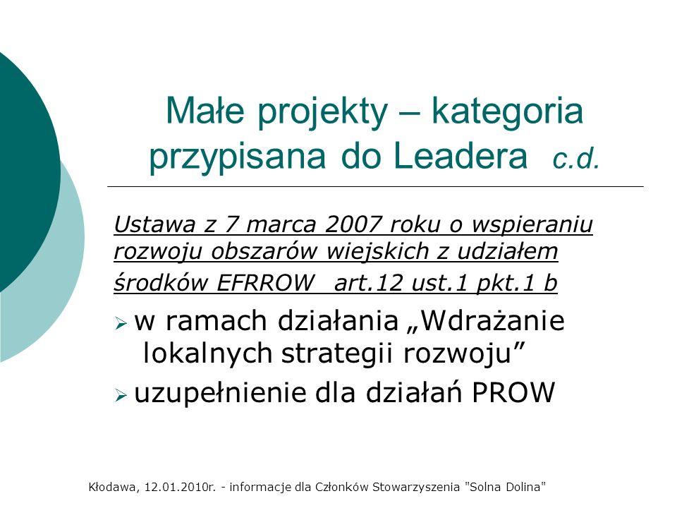 Małe projekty – kategoria przypisana do Leadera c.d.