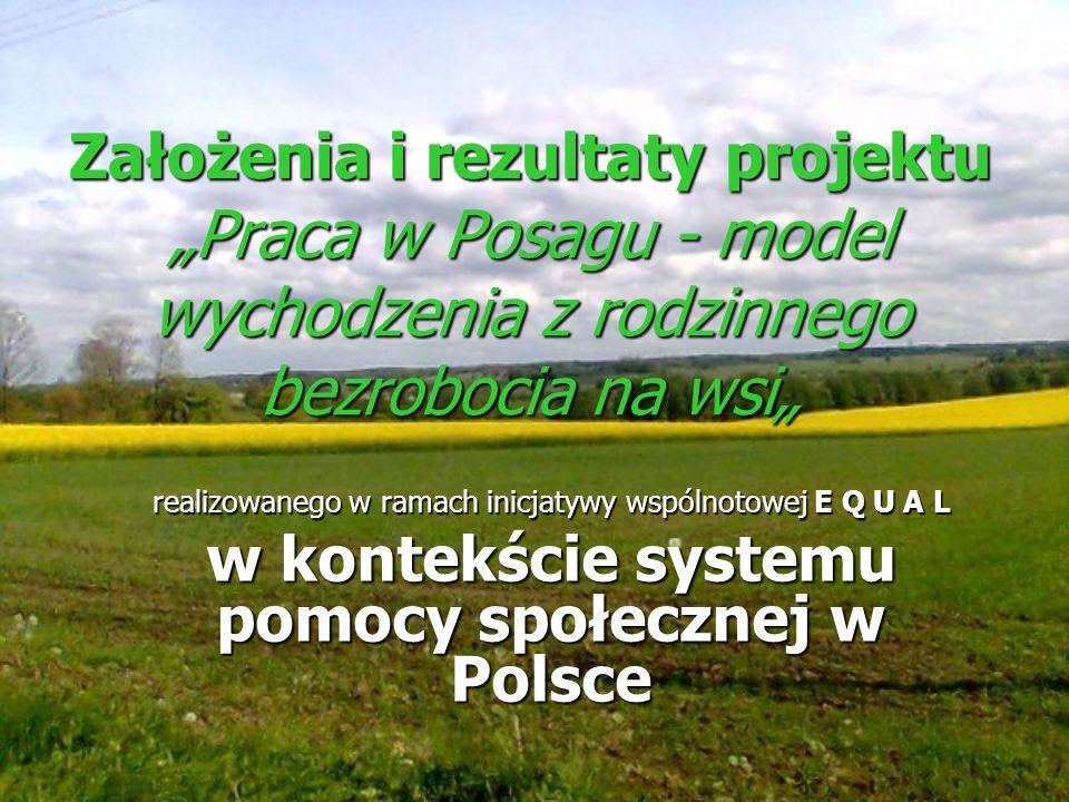 w kontekście systemu pomocy społecznej w Polsce