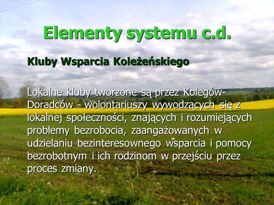 Elementy systemu c.d. Kluby Wsparcia Koleżeńskiego