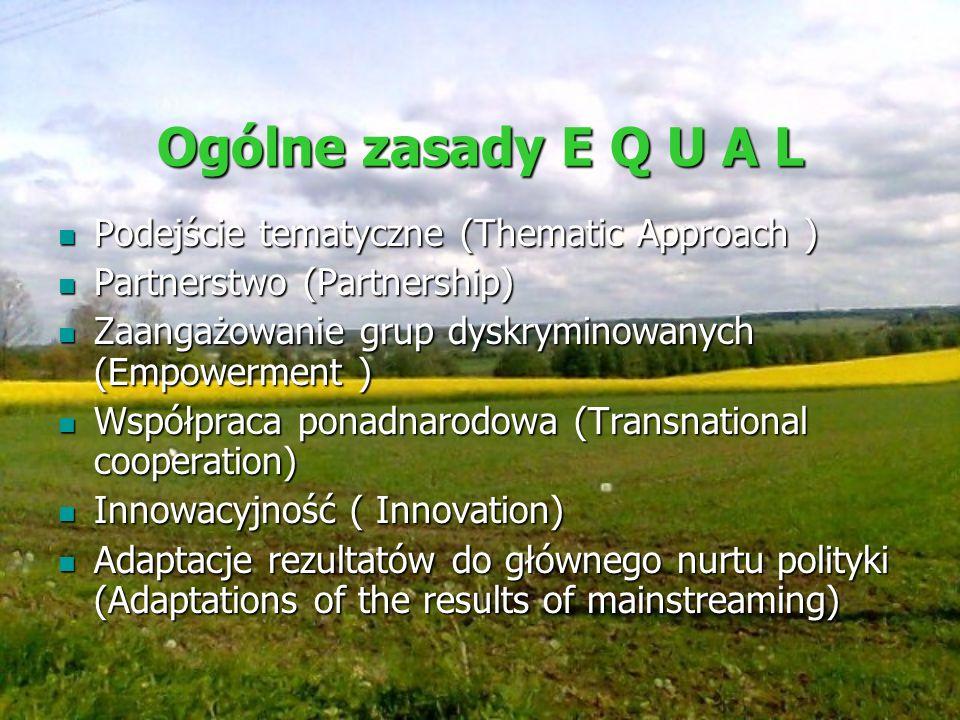 Ogólne zasady E Q U A L Podejście tematyczne (Thematic Approach )