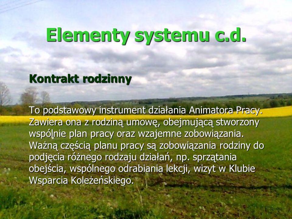 Elementy systemu c.d. Kontrakt rodzinny