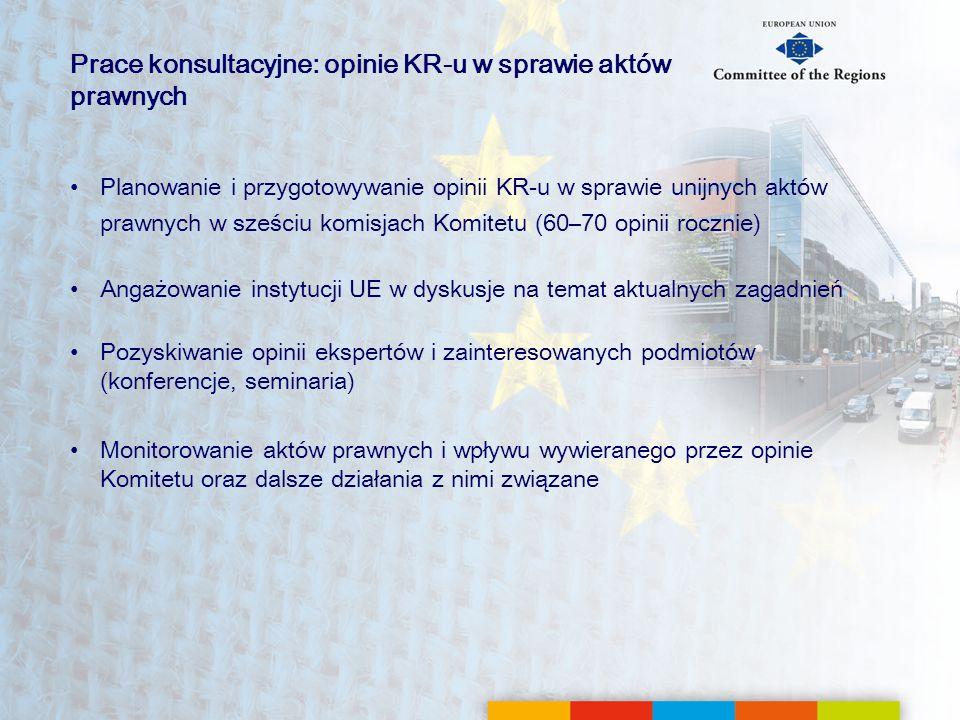 Prace konsultacyjne: opinie KR-u w sprawie aktów prawnych