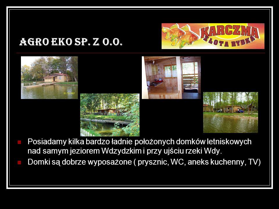 AGRO EKO SP. Z O.O. Posiadamy kilka bardzo ładnie położonych domków letniskowych nad samym jeziorem Wdzydzkim i przy ujściu rzeki Wdy.
