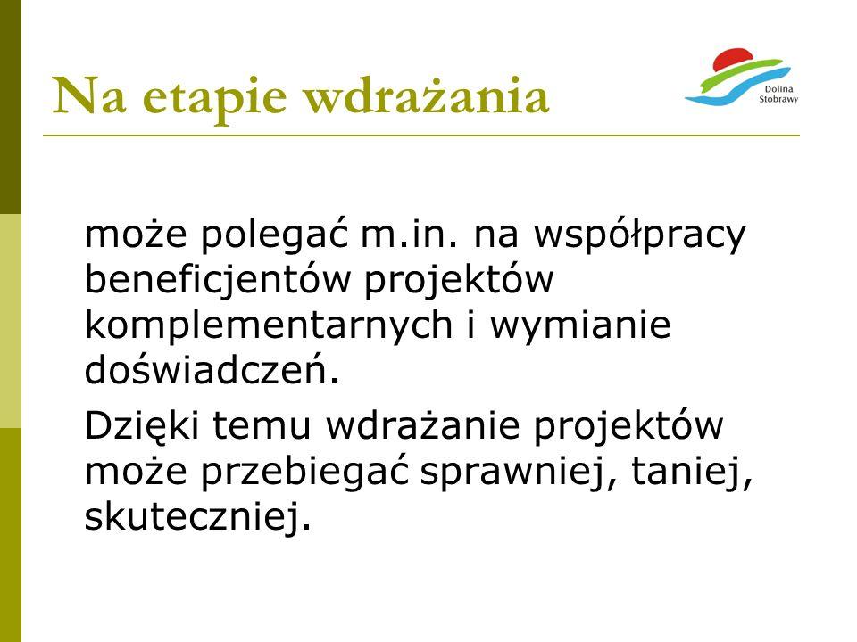 Na etapie wdrażaniamoże polegać m.in. na współpracy beneficjentów projektów komplementarnych i wymianie doświadczeń.