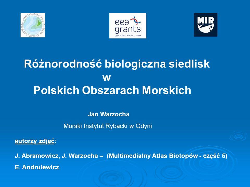 Różnorodność biologiczna siedlisk w Polskich Obszarach Morskich