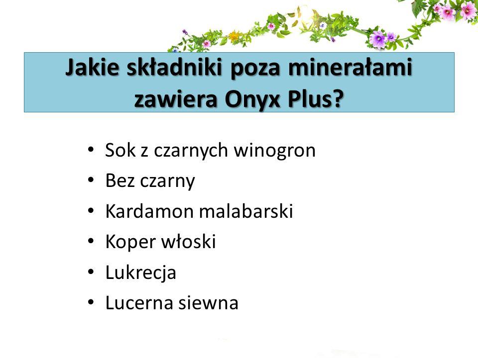 Jakie składniki poza minerałami zawiera Onyx Plus