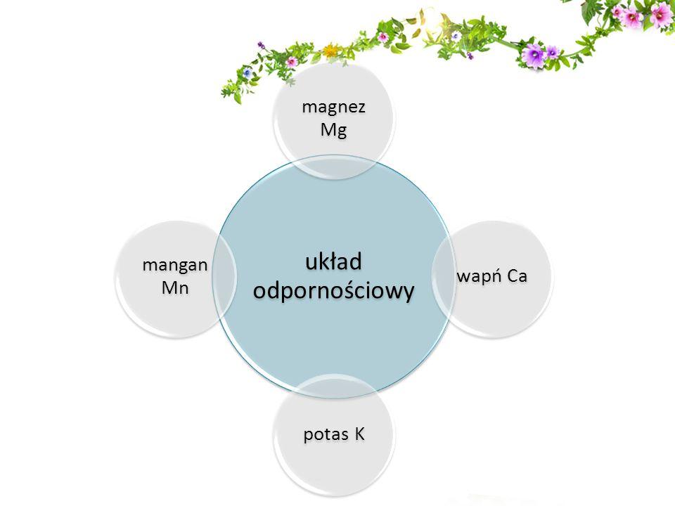 układ odpornościowy magnez Mg wapń Ca potas K mangan Mn