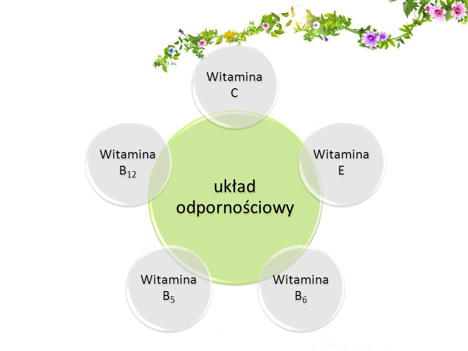 układ odpornościowy Witamina C Witamina E Witamina B6 Witamina B5 Witamina B12