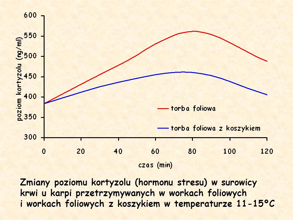 Zmiany poziomu kortyzolu (hormonu stresu) w surowicy krwi u karpi przetrzymywanych w workach foliowych