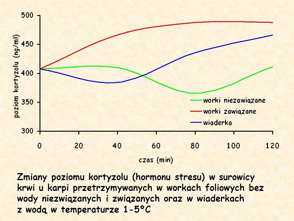 Zmiany poziomu kortyzolu (hormonu stresu) w surowicy