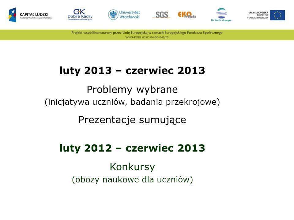 luty 2013 – czerwiec 2013 Problemy wybrane Prezentacje sumujące