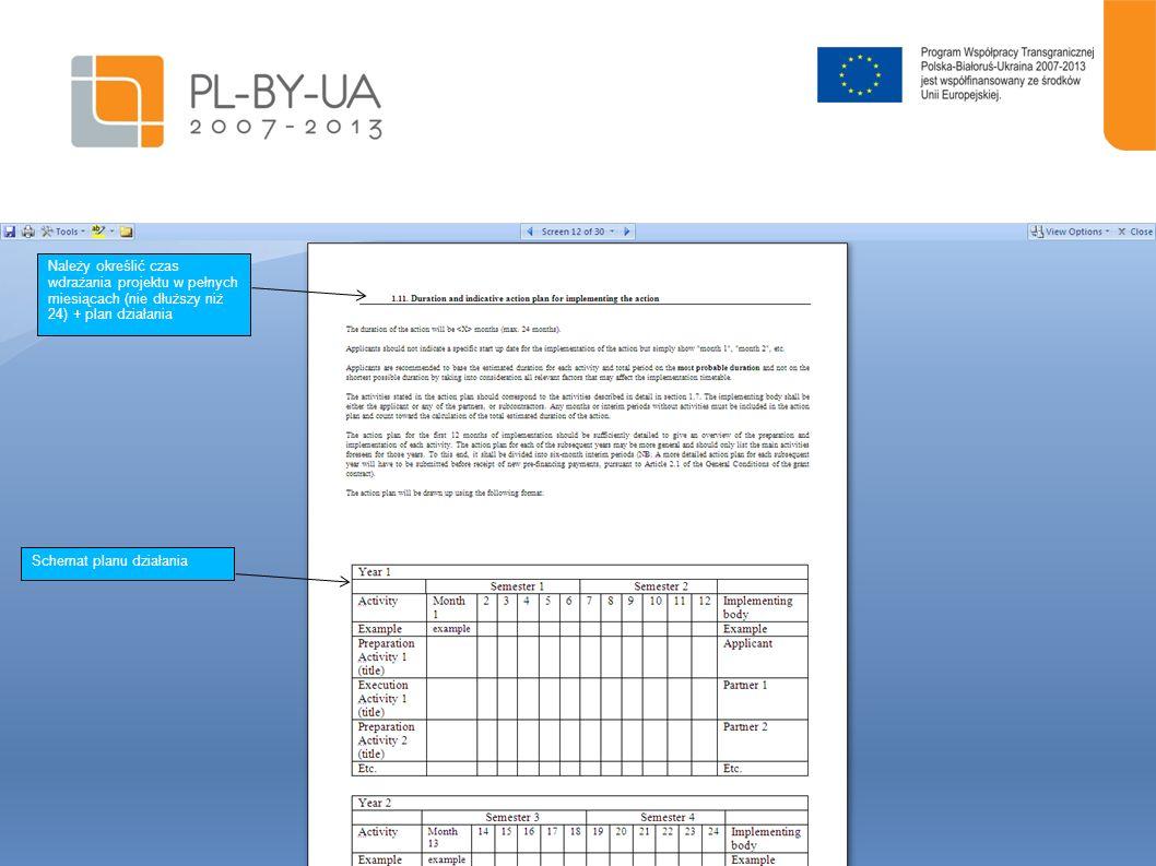 Należy określić czas wdrażania projektu w pełnych miesiącach (nie dłuższy niż 24) + plan działania